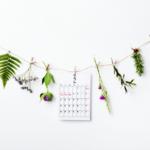 【月間カレンダー】2020年版無料配布!今回もシンプルデザインの月曜始まり!